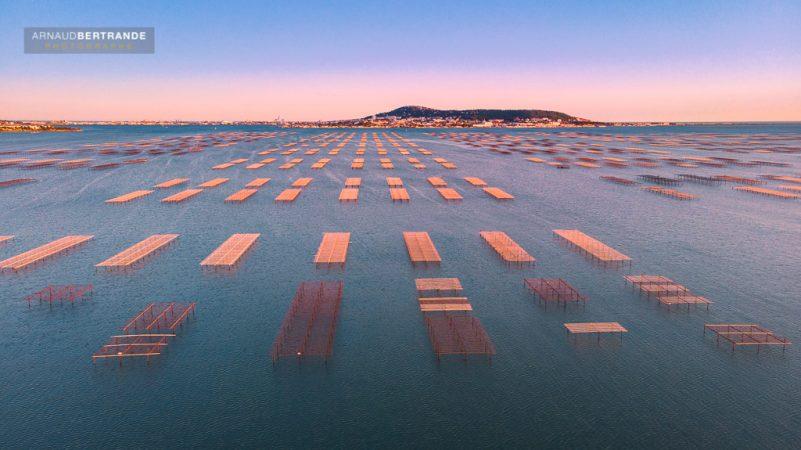 Parc à huîtres de Bouzigues vu par un drone au coucher du soleil avec la ville de Sète